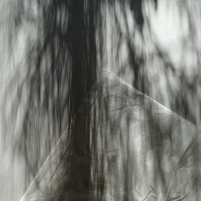 specials_shadows_05_DSC07011