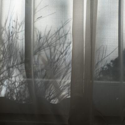 specials_shadows_12_DSC07486