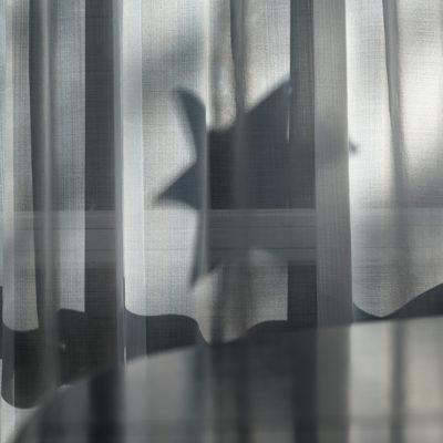 specials_shadows_13_DSC07505
