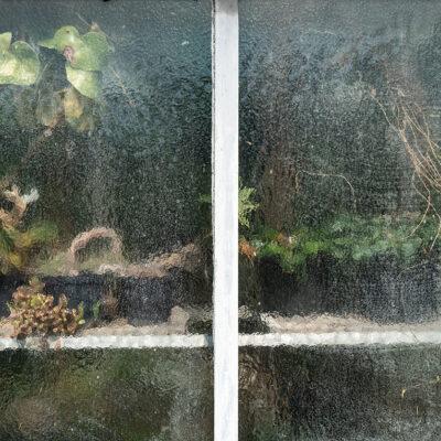 Greenhouse #13813-S7