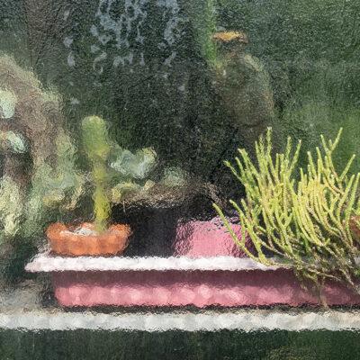 Greenhouse_02_DSC03888_M