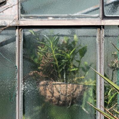 Greenhouse #13931-S7
