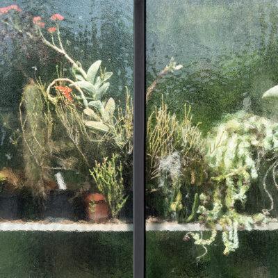 Greenhouse #12587-S7