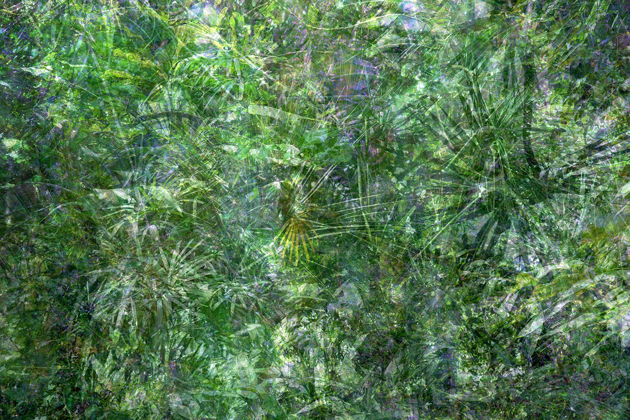 Das Goldberg Prinzip / Greenhouse 01
