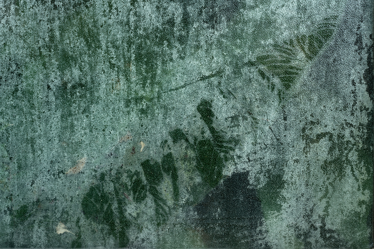 Greenhouse #13917-S7