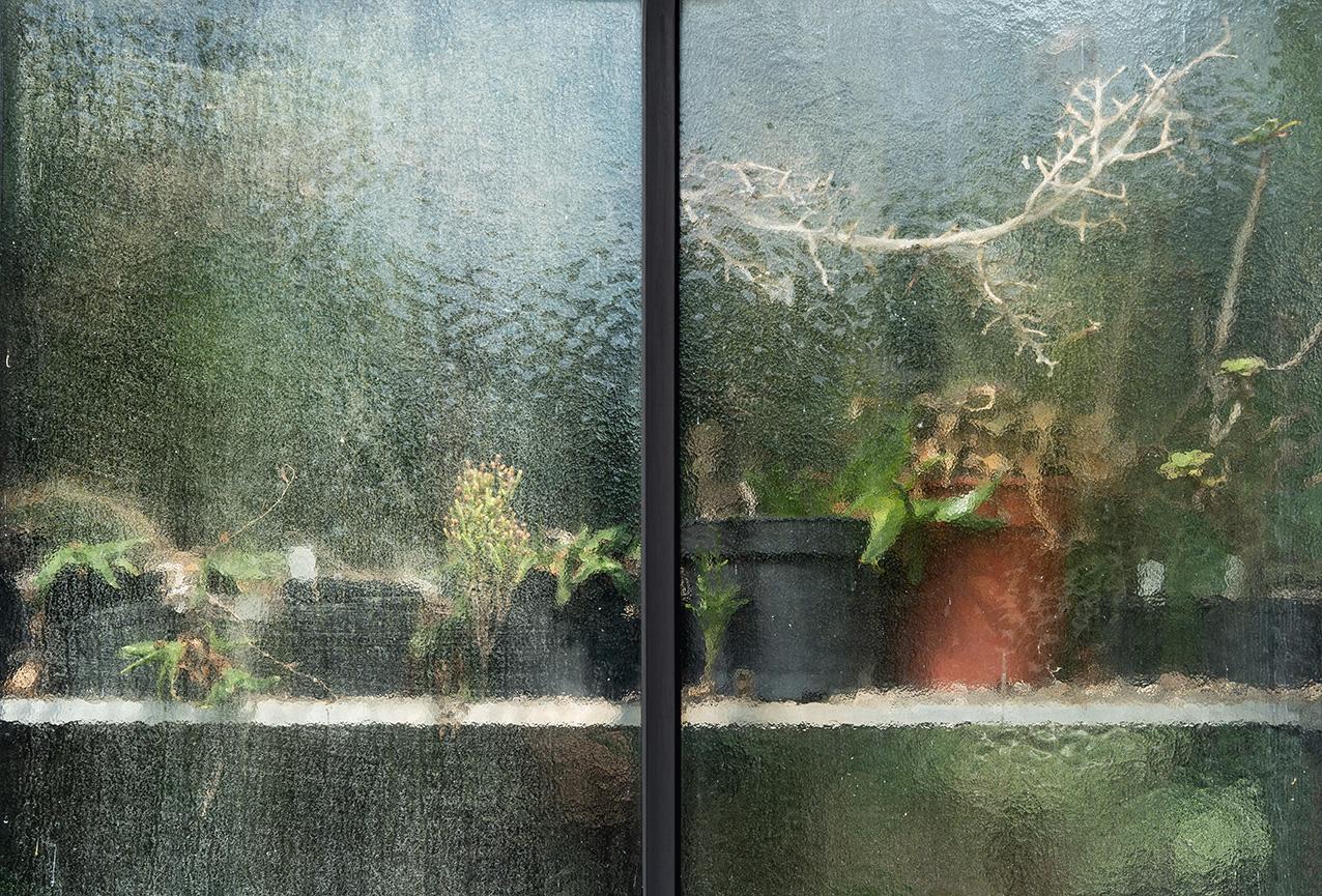Greenhouse #12591-S7