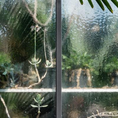 Greenhouse #12599-S7
